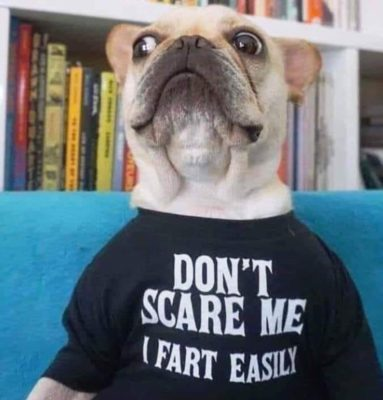 Funny Dog Don't Scare Me I Fart Easily Shirt Tank top