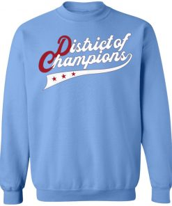 Nationals District Of Champions sweater