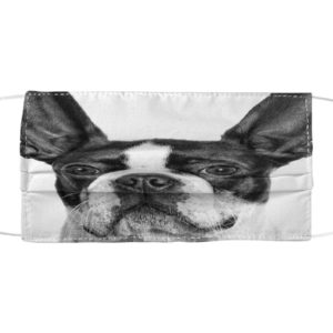 Boston Terriers 3D Cloth Face Mask