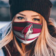Arizona Coyotes cloth face mask