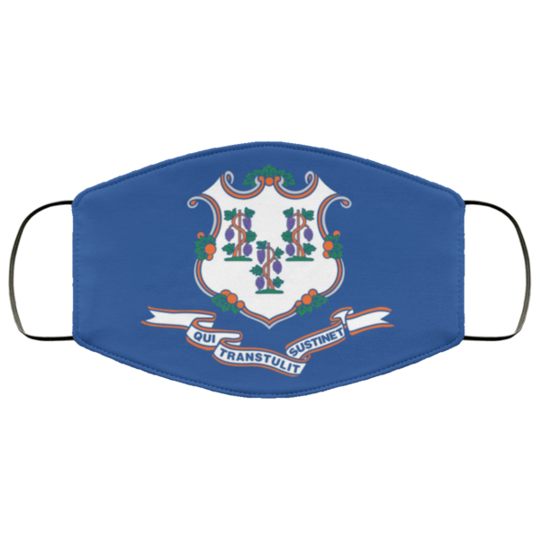 Flag of Connecticut state face mask
