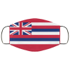 Flag of Hawaii state face mask