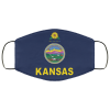Flag of Kansas state face mask