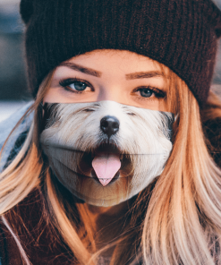 CUTE WHEATEN TERRIER DOG SMILING OUTSIDE SHOWING TONGUE BREED WHITE HAIR FACE MASK